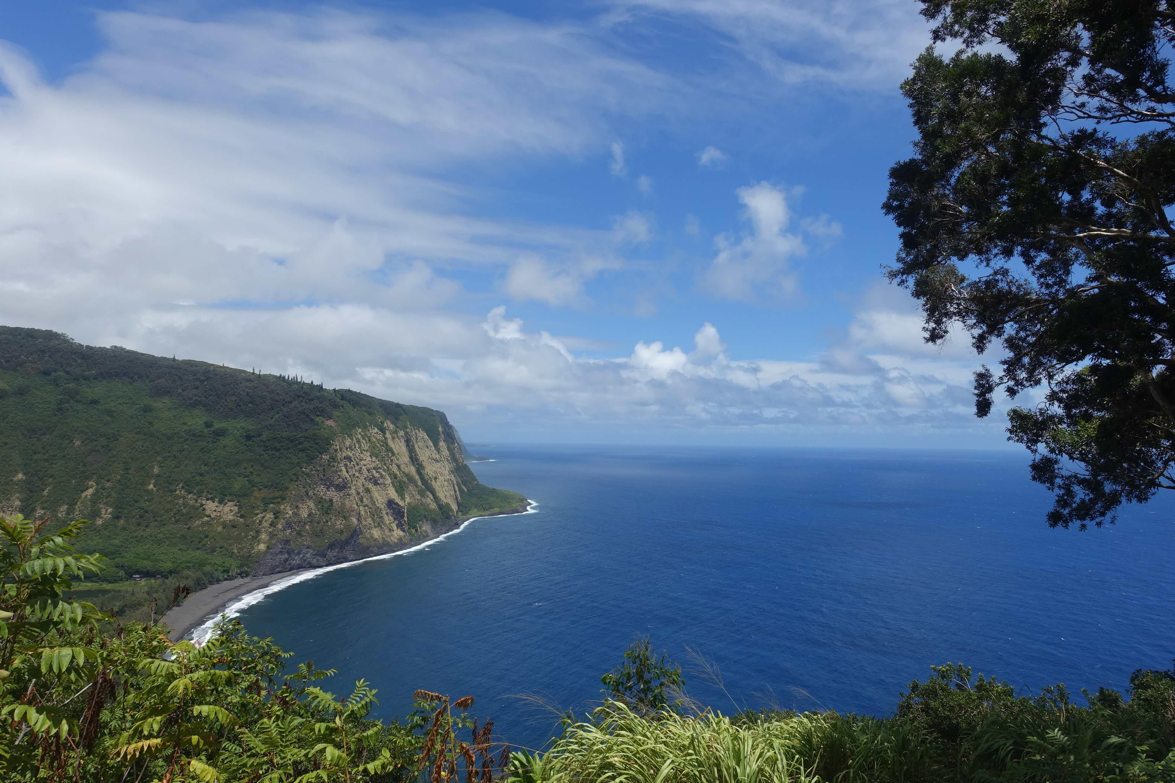 ハワイの観光戦略で重視される「レスポンシブル・ツーリズム」(責任ある観光)とは? 地元と旅行者のあるべき関係性を聞いてきた | トラベルボイス