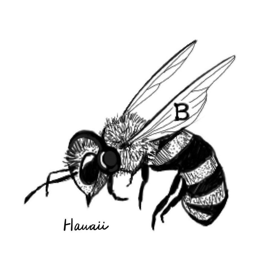 Etsy の BeeStudioWorksPaypalMastercardVisaAmerican ExpressApple PayJAPAN