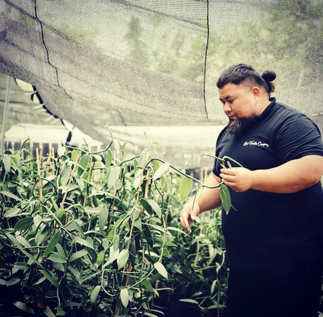 ハワイで農場を営む「Laie Vanilla Co.」