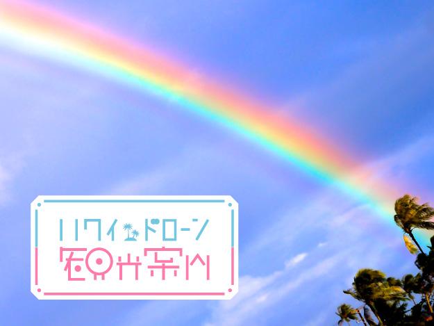 [ハワイドローン観光案内]Vol.01 ハワイでドローンはじめました。 - DRONE | ドローン専門メディア